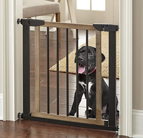 Baby Gates for Dogs